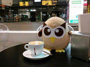 Owly se va a Granada
